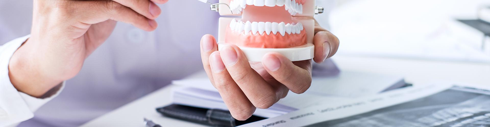 Dr. Ahmed Mowla